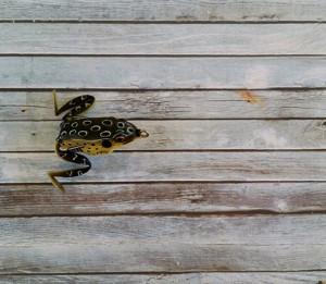 Lunkerhunt Pocket Frog Croaker
