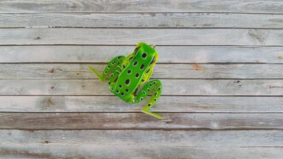 Lunkerhunt Popping Frog Leopard