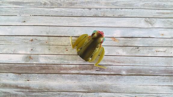 Lunkerhunt Popping Frog Blue Gill