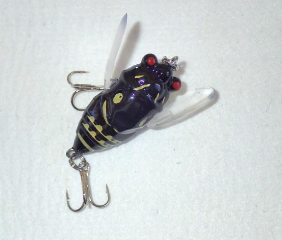 Cicada Winged 38mm Black fl
